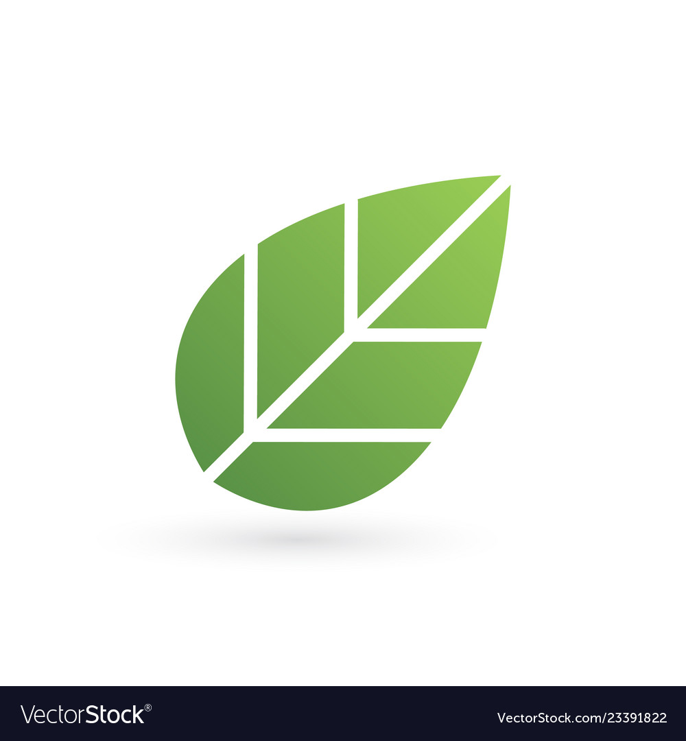 Eco tree leaf logo template isolated on white
