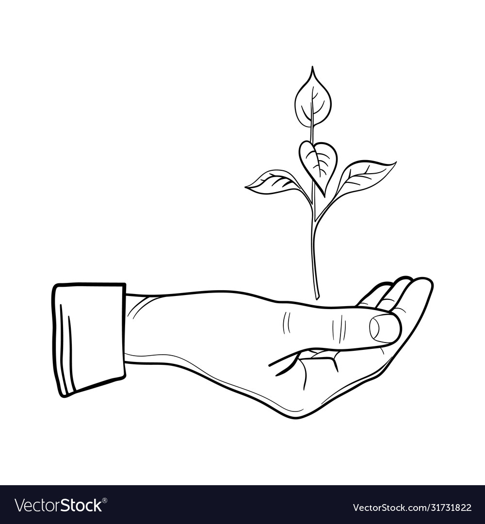 Human hand with a young sprout line art sprout