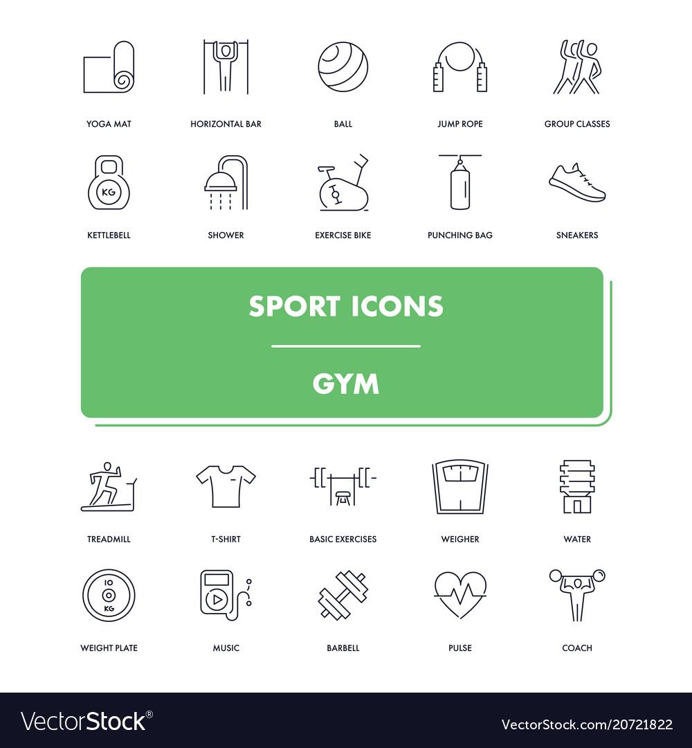 Line sport icons set gym