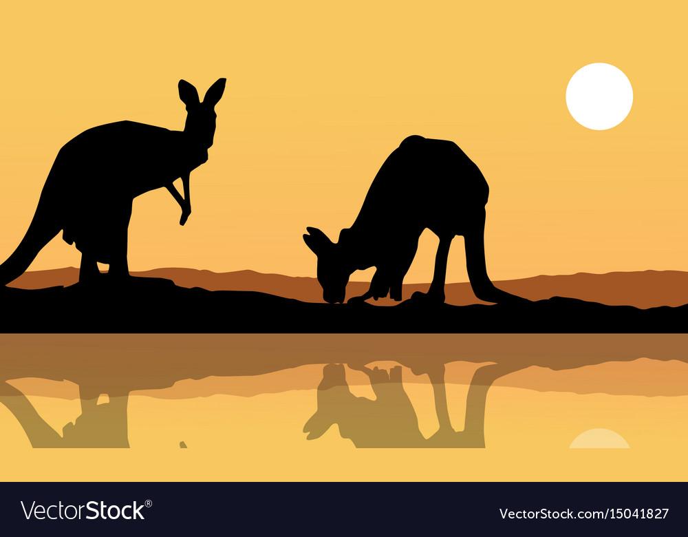 Kangaroo on the lake landscape silhouette
