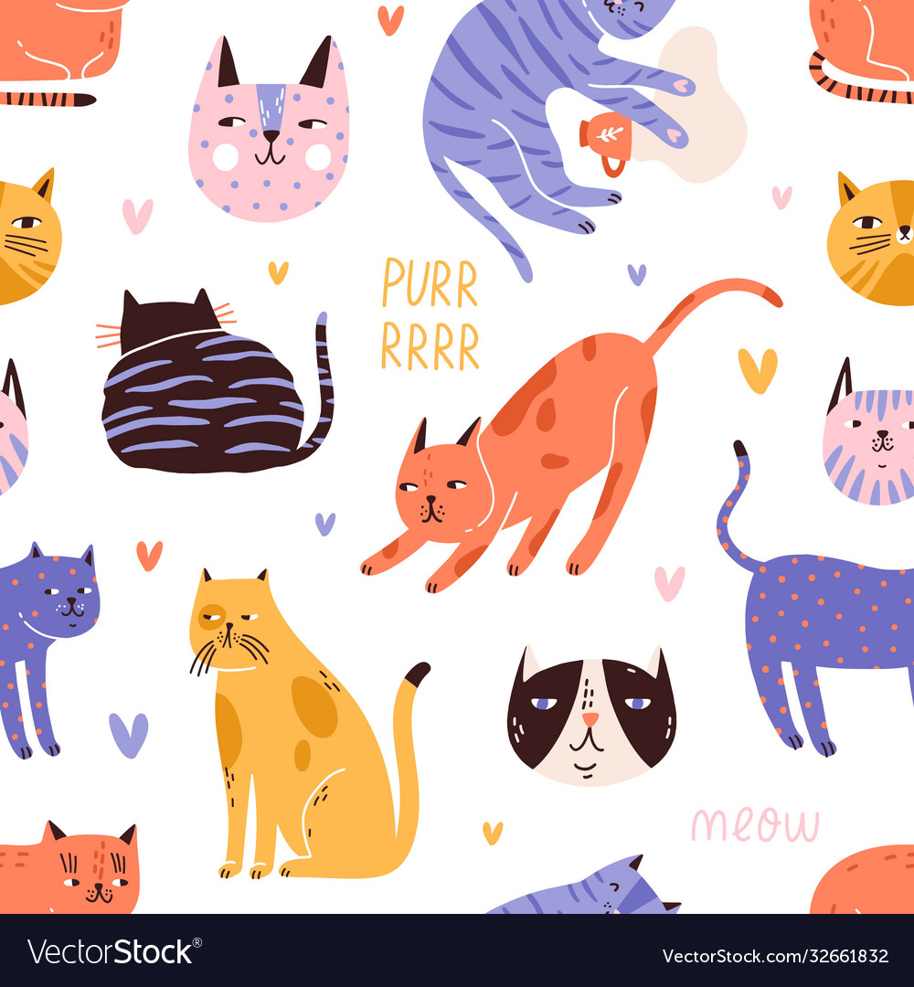 Backdrop with cute funny cat head muzzle face