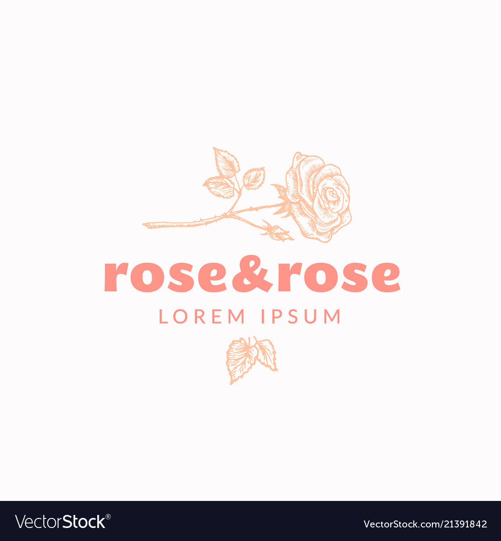 Rose and rose abstract sign symbol or logo