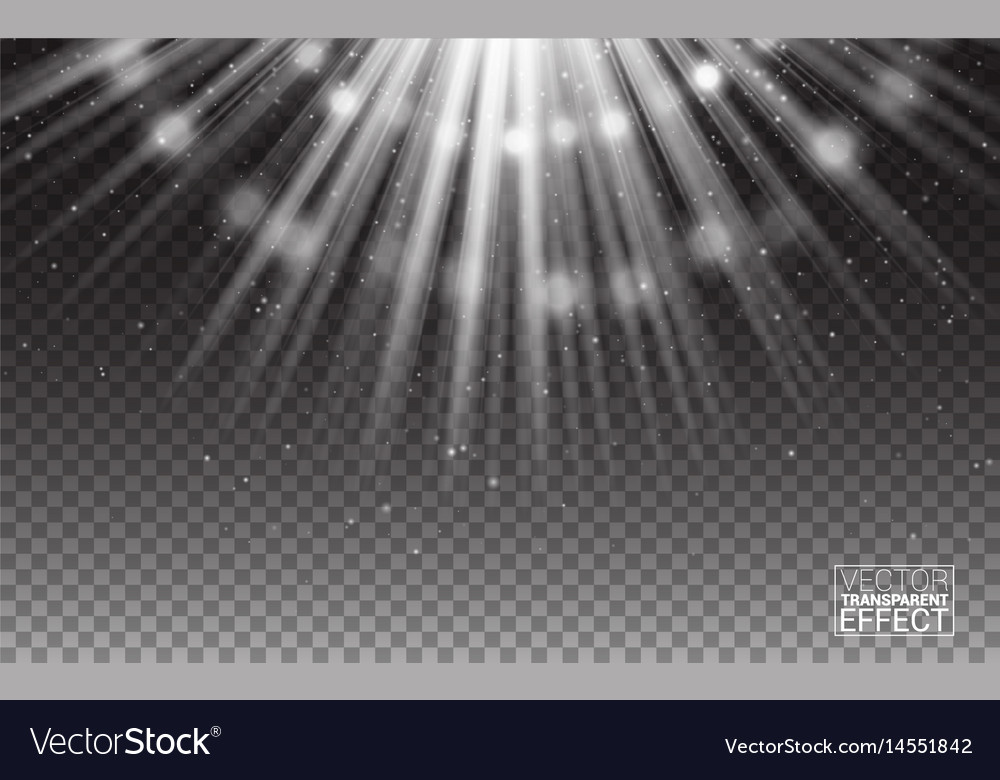White rays light flare abstract vector image