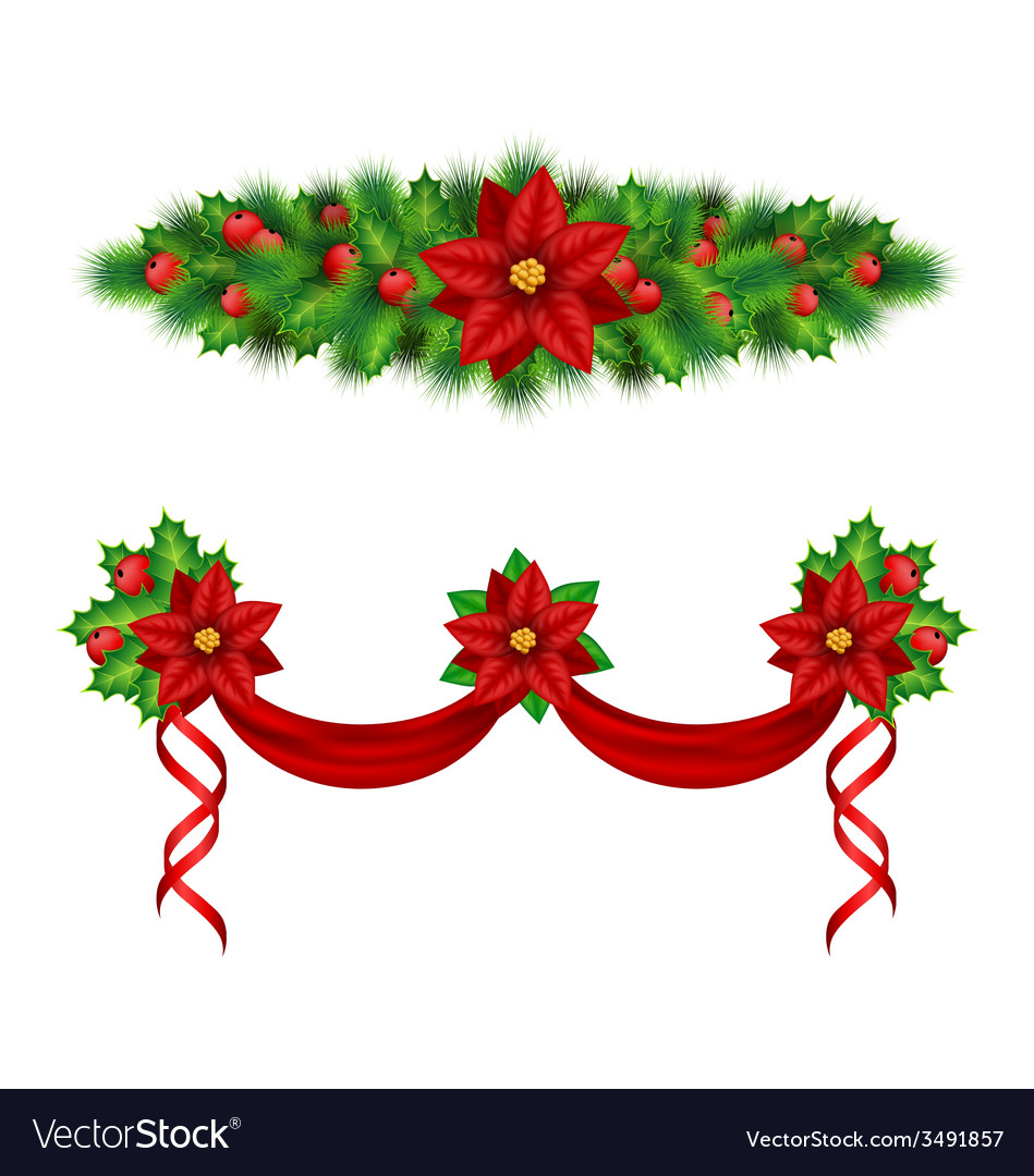 Garlands with poinsettia holly pine on white