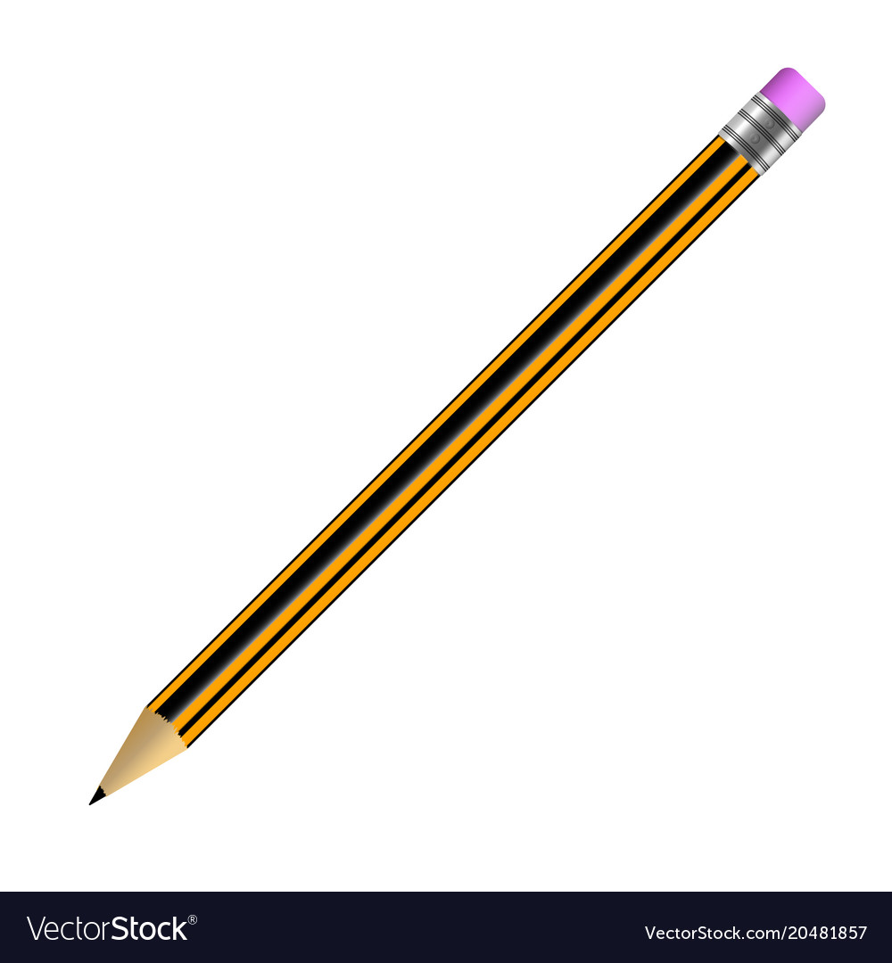 Pencil simple with rubber band isolated on white vector image