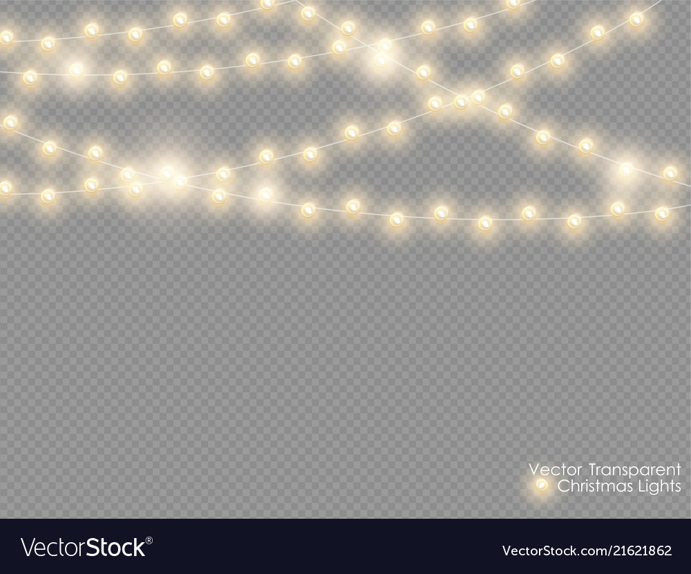 Christmas Fairy Lights Transparent.Christmas Lights Isolated On Transparent
