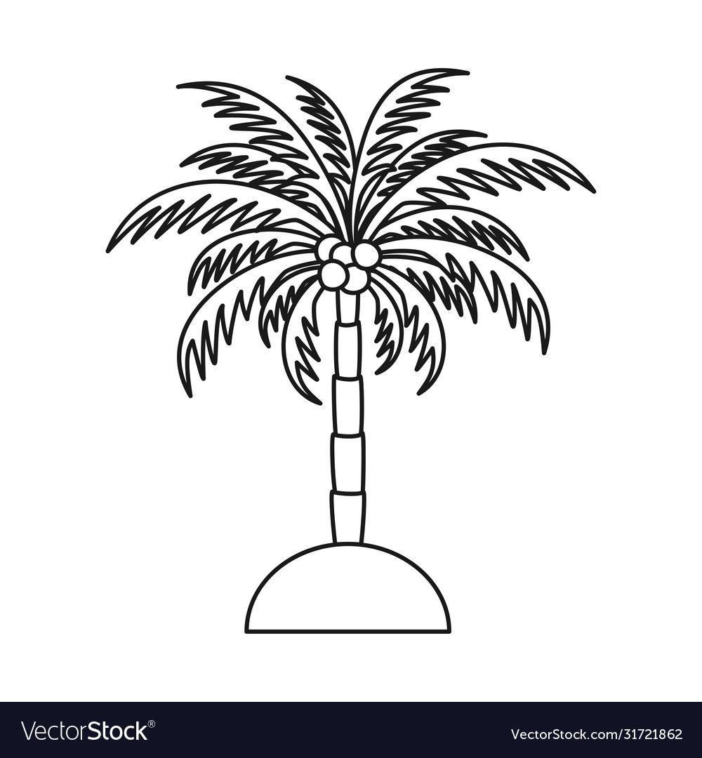 Line Art Black And White Palm Tree Royalty Free Vector Image