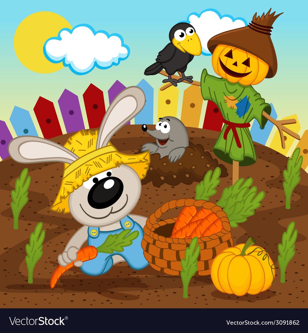 Rabbit harvest