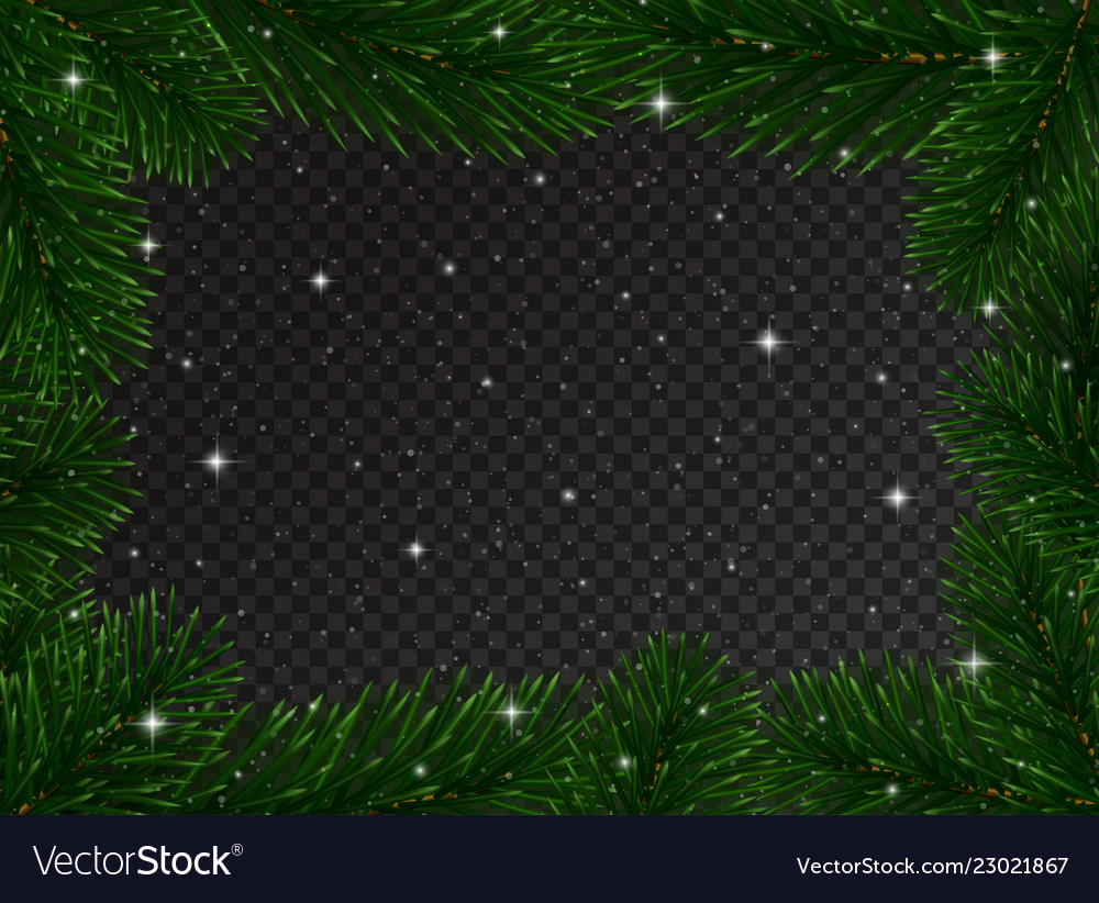 Christmas border with fir tree branches and snow