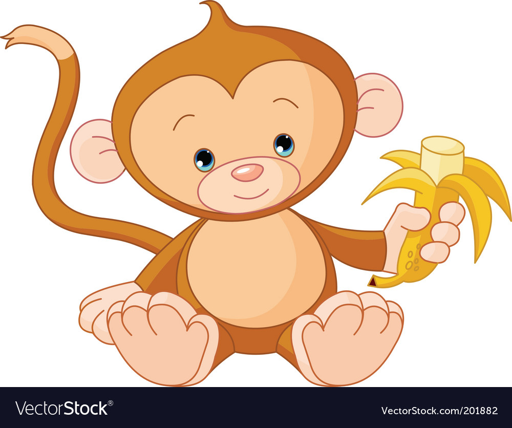 Cute Pics Of Monkeys. cute links to monkeys,