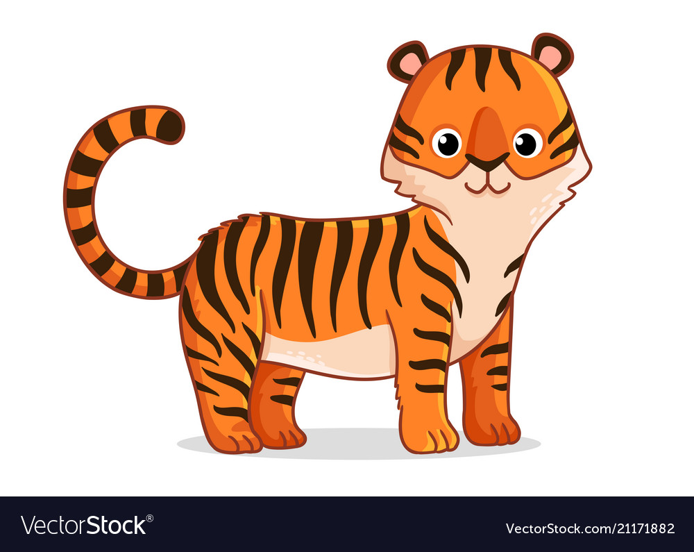 Cute tiger stands on a white background