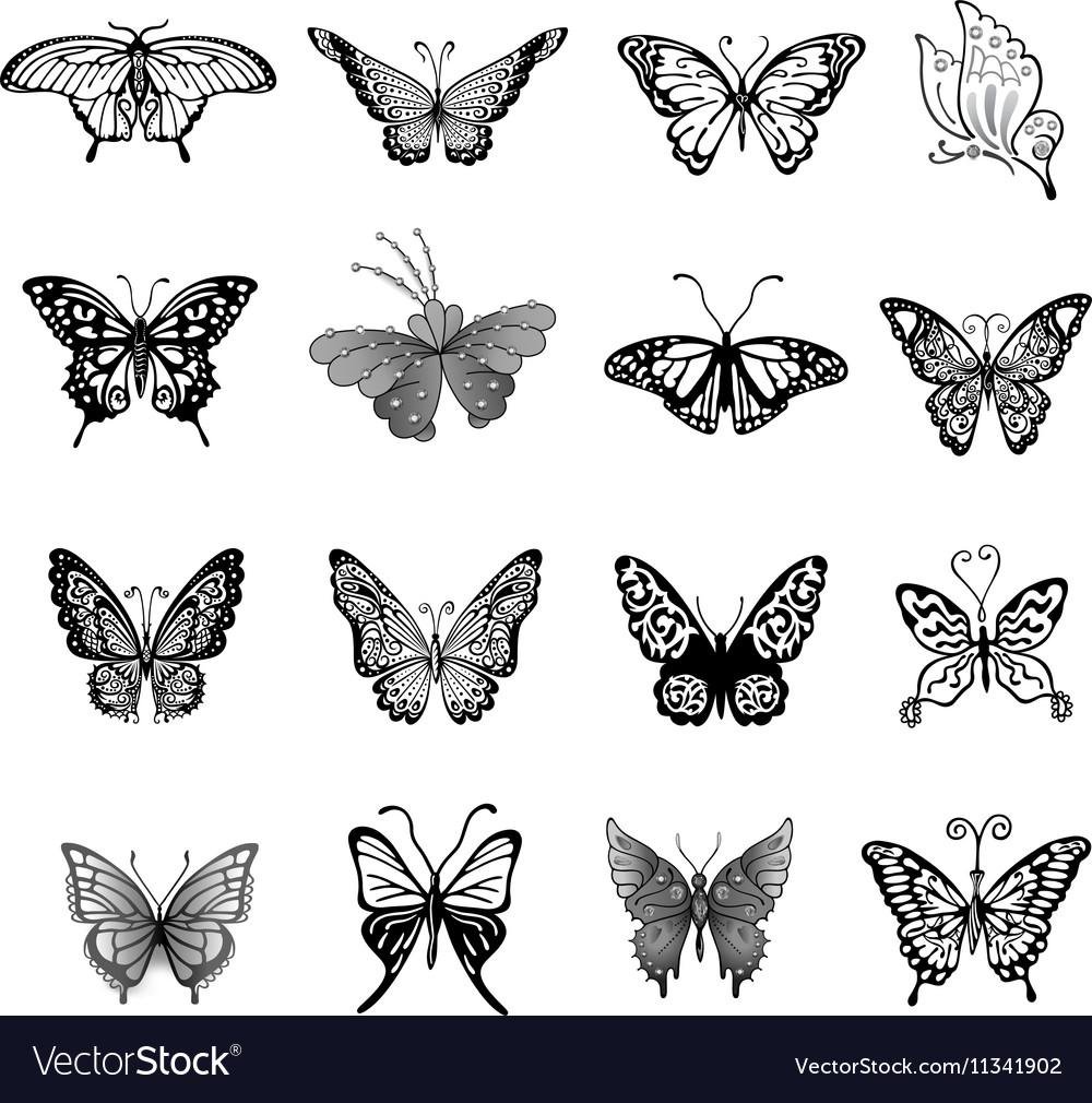 Black butterfly logo set vector image
