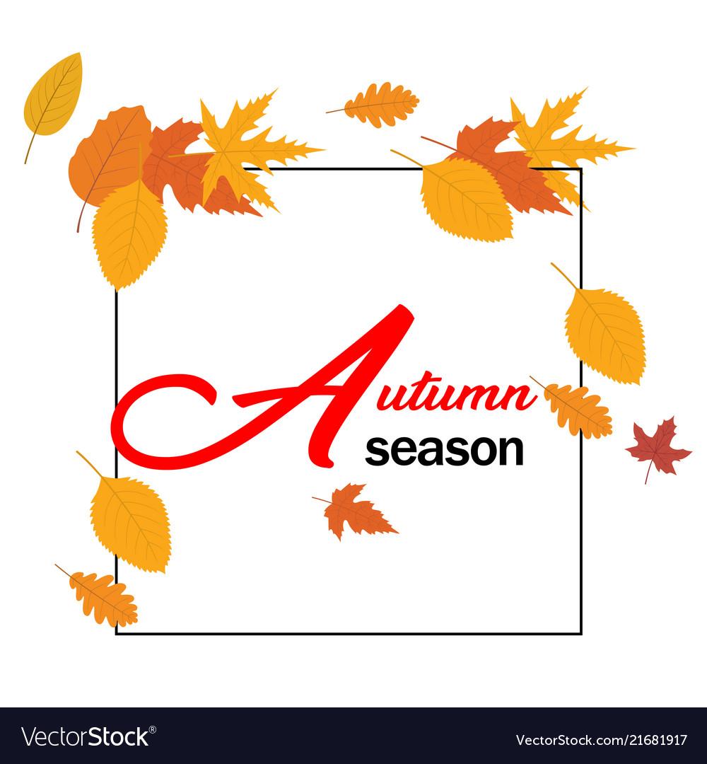Autumn season orange autumn leaves square frame ve