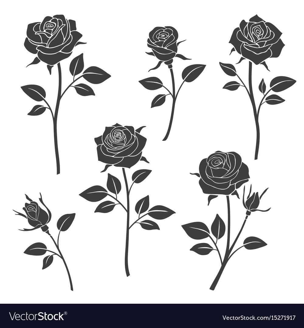 Rose buds silhouettes flowers design