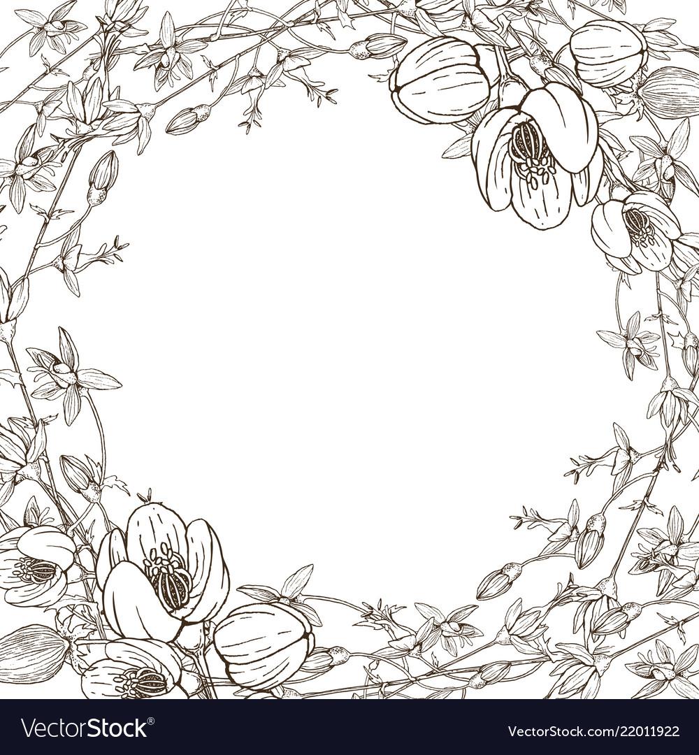 Wreath wild herbal flowers hand drawn
