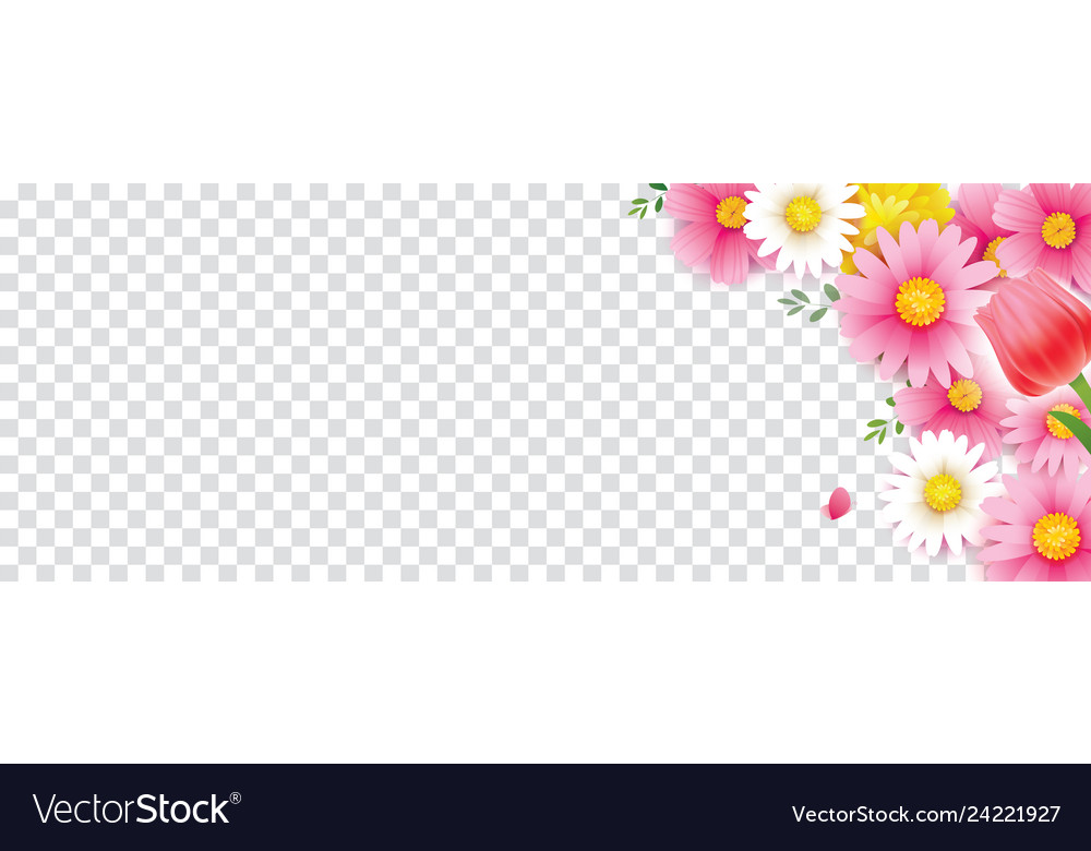 Hello spring flower frame with transparent