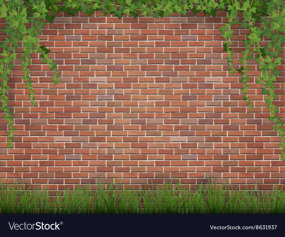 ivy and grass on brick wall background royalty free vector