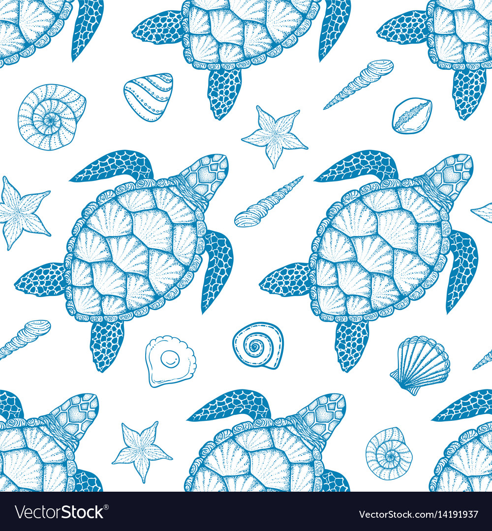 seamless pattern with sea turtle and shells vector image