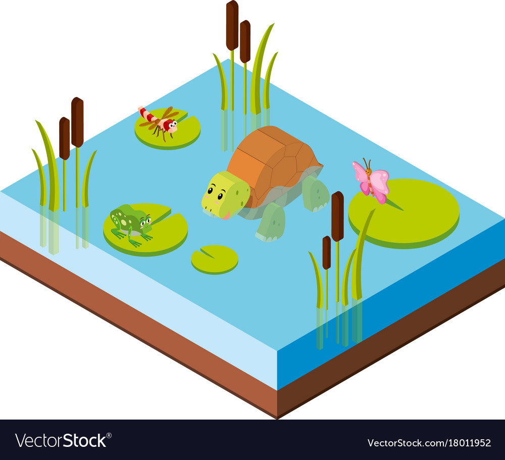 3d design for animals in the pond