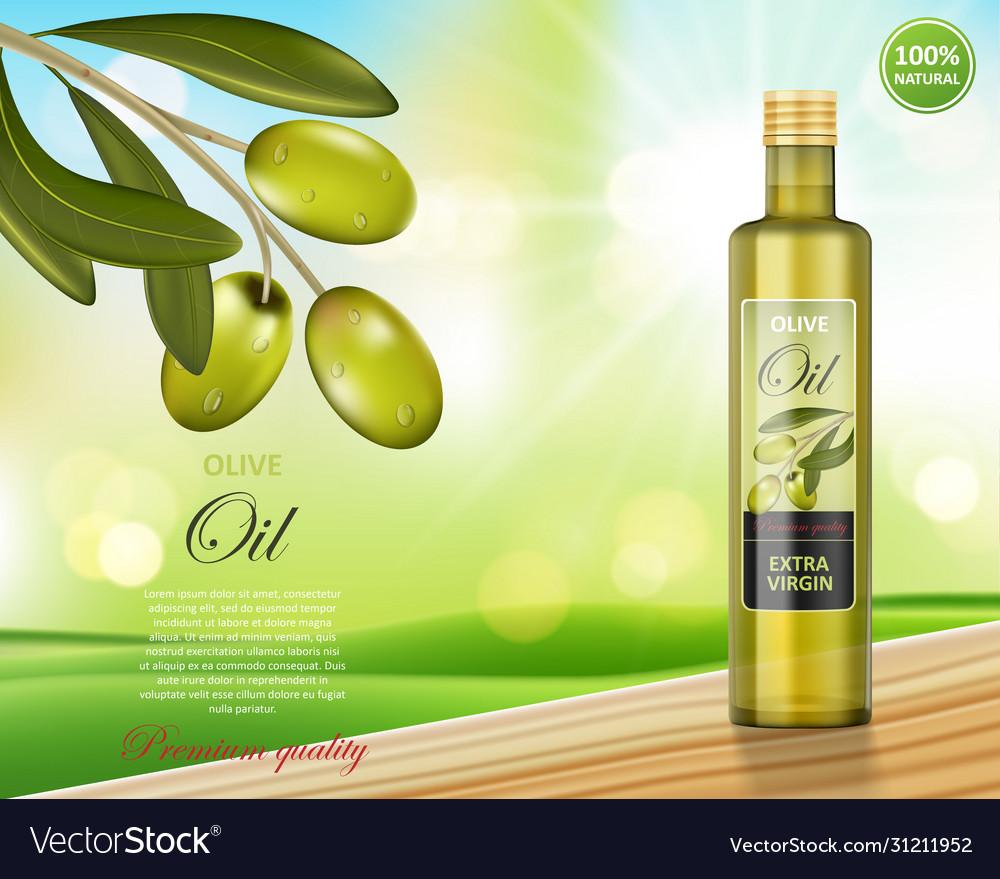 Olive oil bottle design on green shiny background