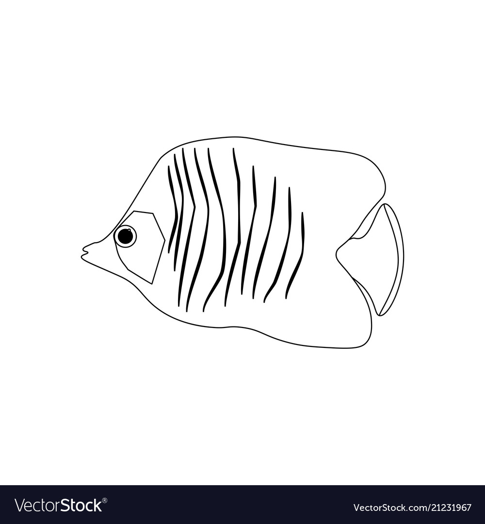 Chaetodon Auriga Butterflyfish Coloring Pages Vector Image