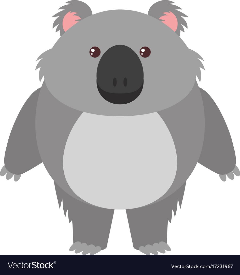 Cute Koala Bear On White Background Royalty Free Vector