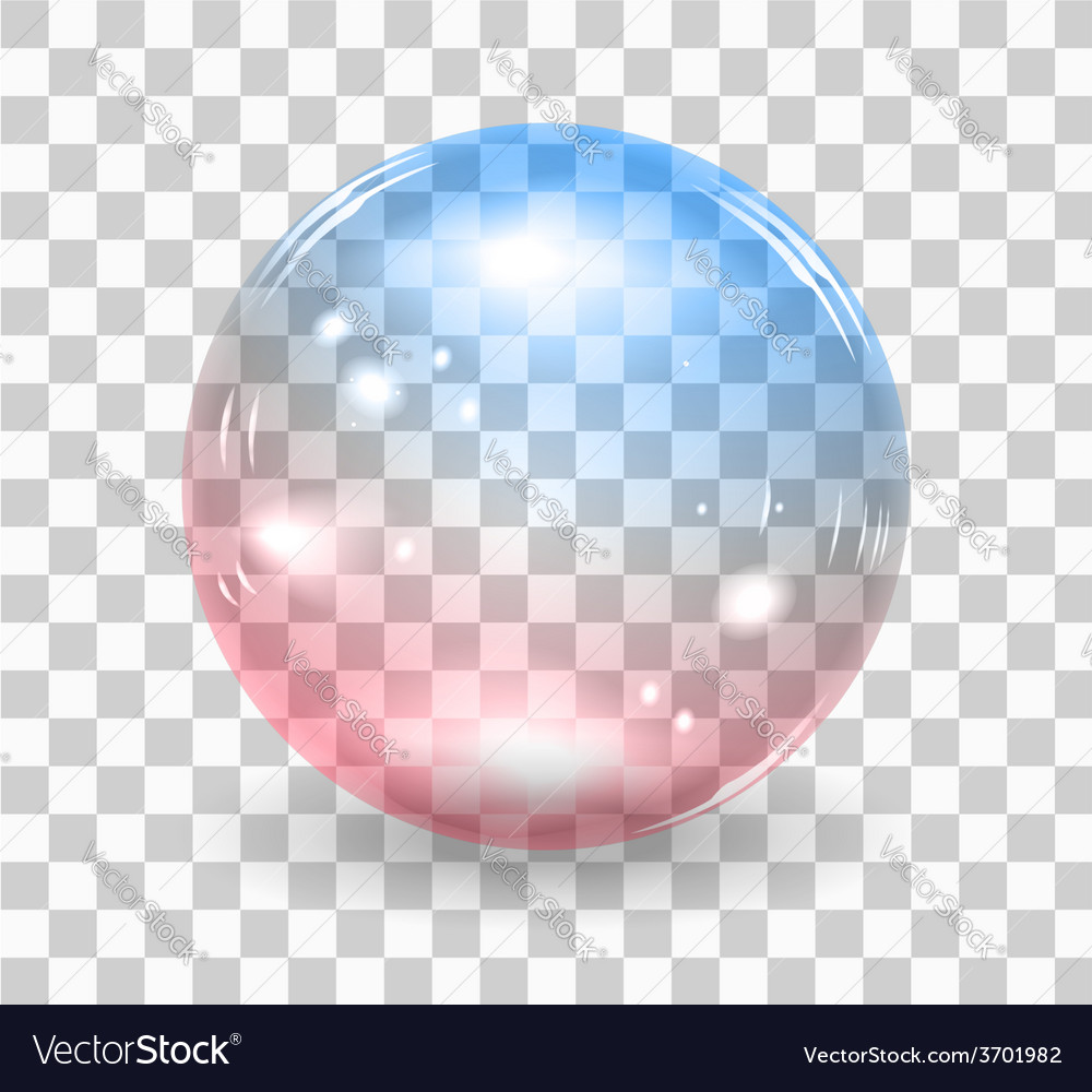 Bubble soap vector image