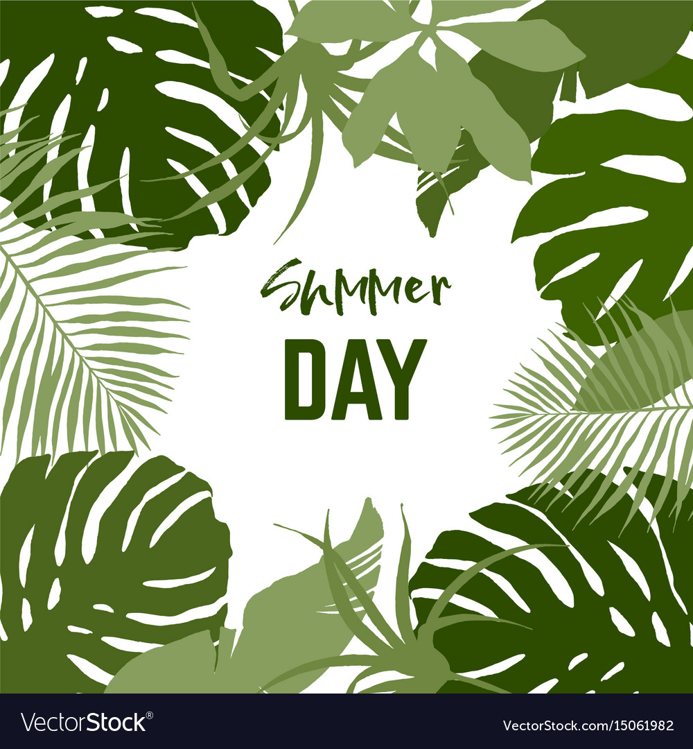 Square frame composed tropical leaves vector image
