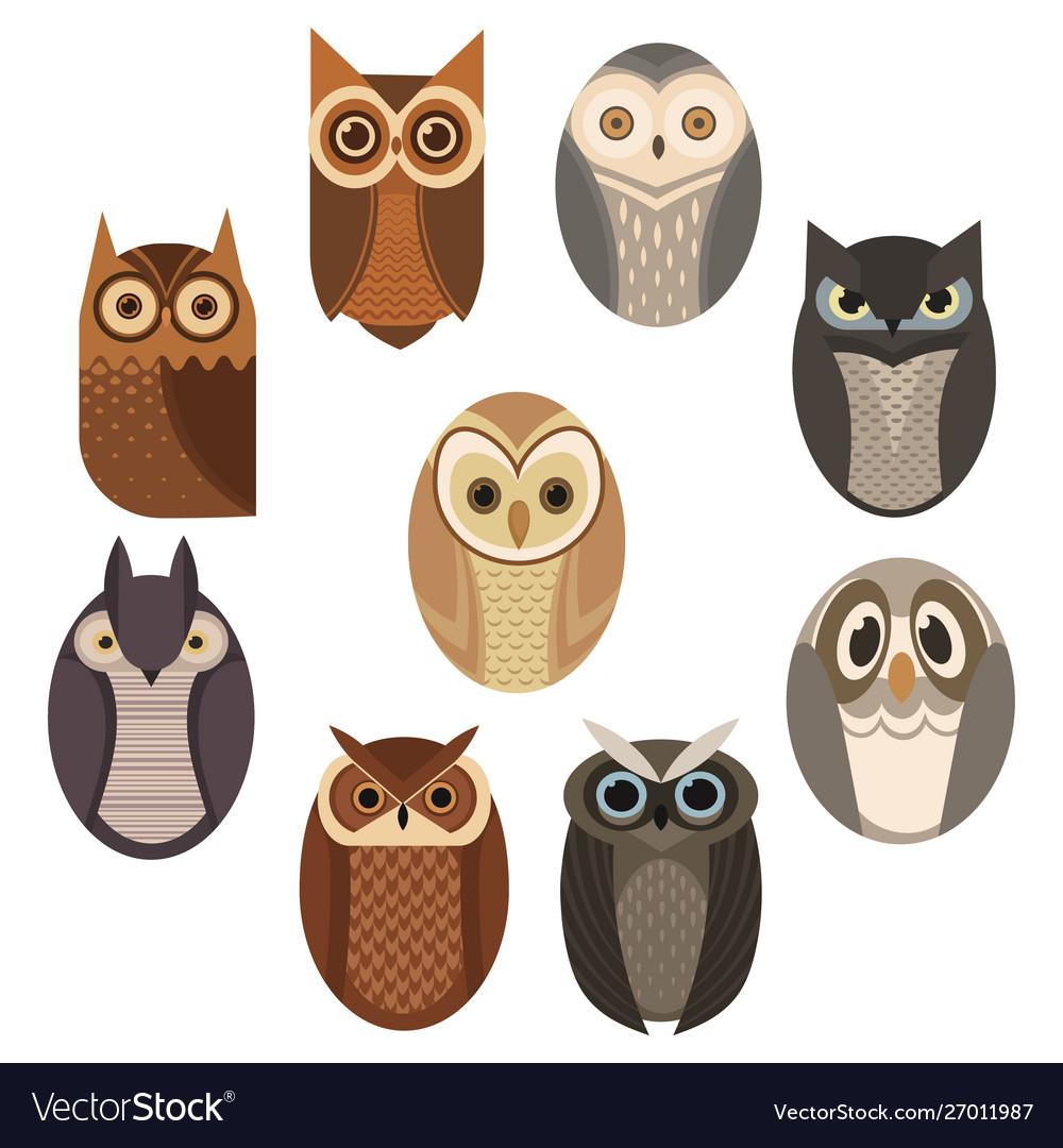 Set stylized owls collection decorative