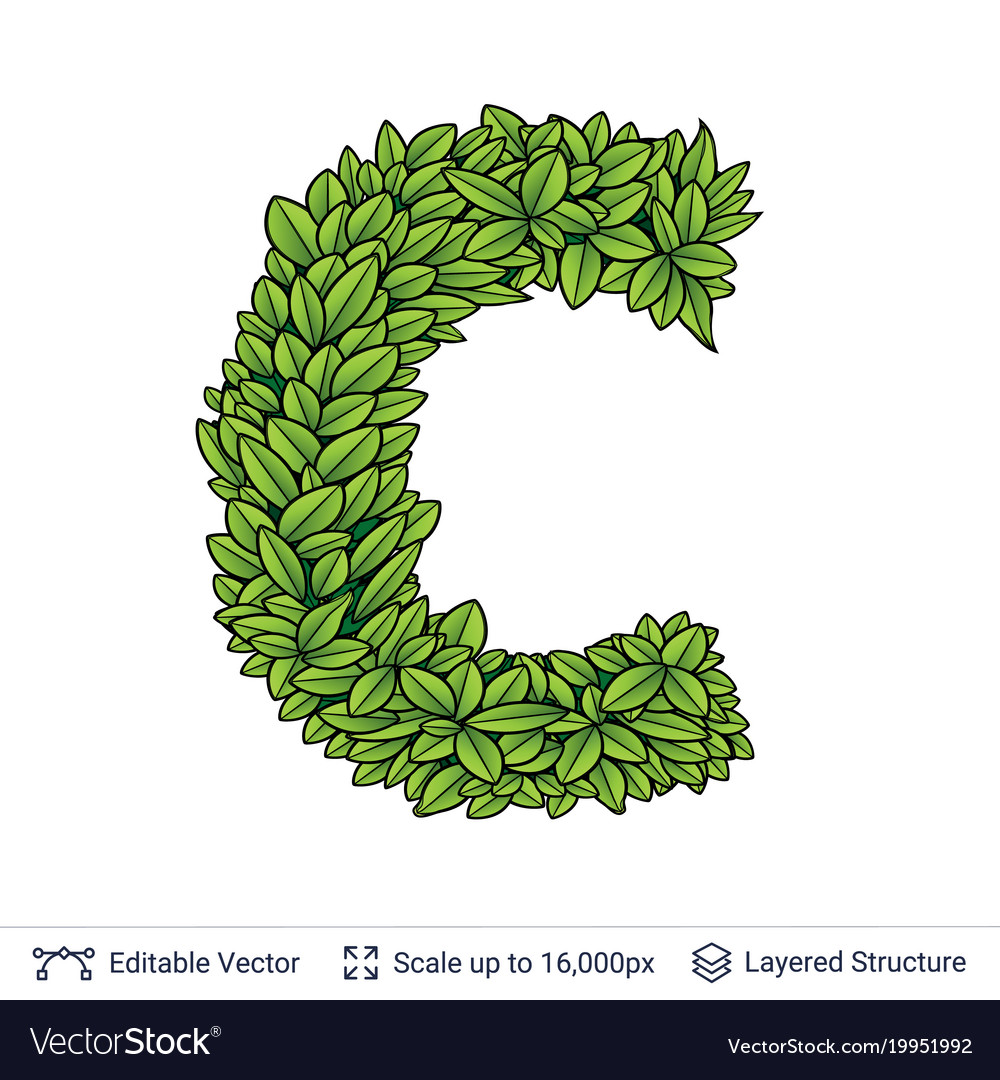 Letter C Symbol Of Green Leaves Royalty Free Vector Image