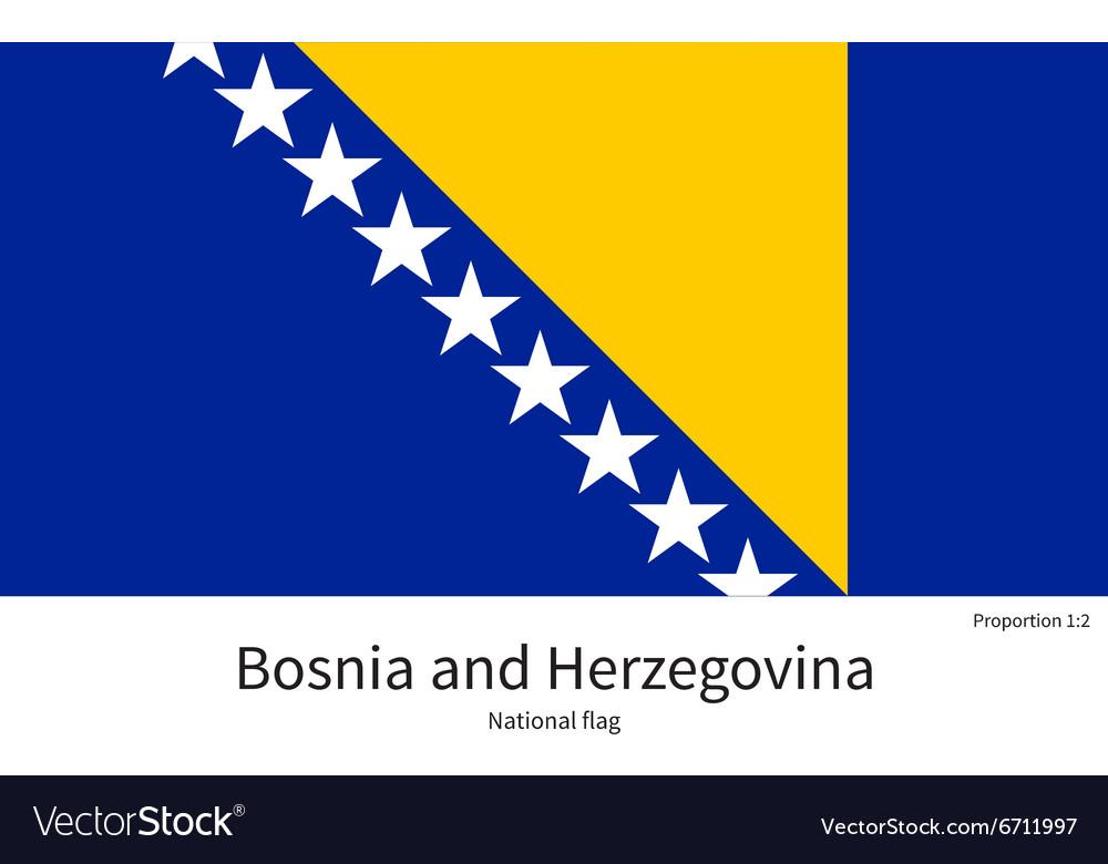 National flag of Bosnia and Herzegovina with
