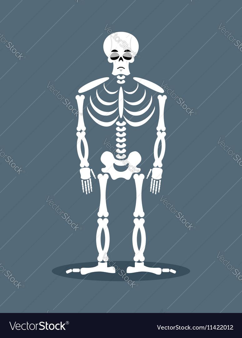 Sad skeleton Frustrated skull Sorrowful dead vector image