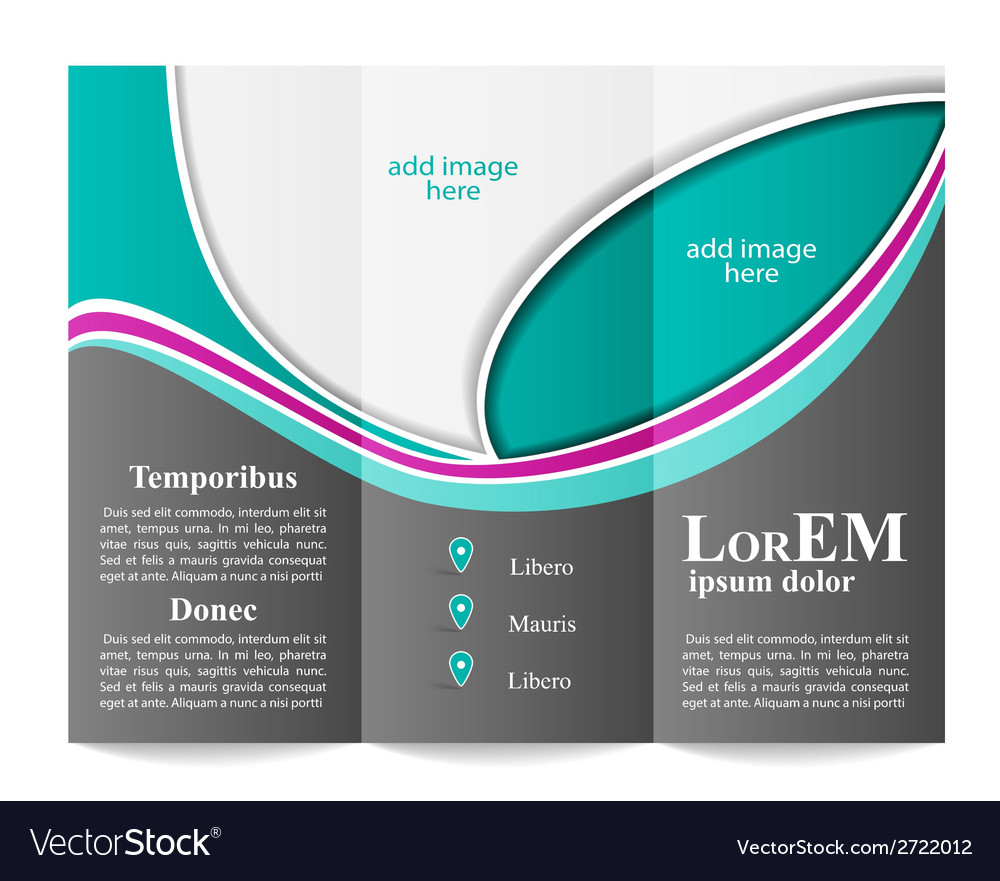 tri fold brochure template royalty free vector image