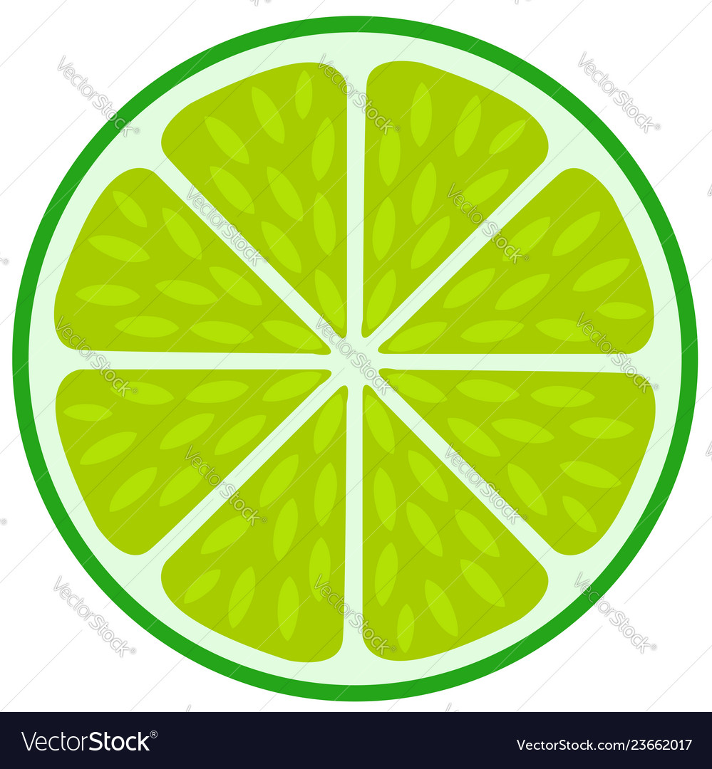 Green lime slice- citrus fruit cut section