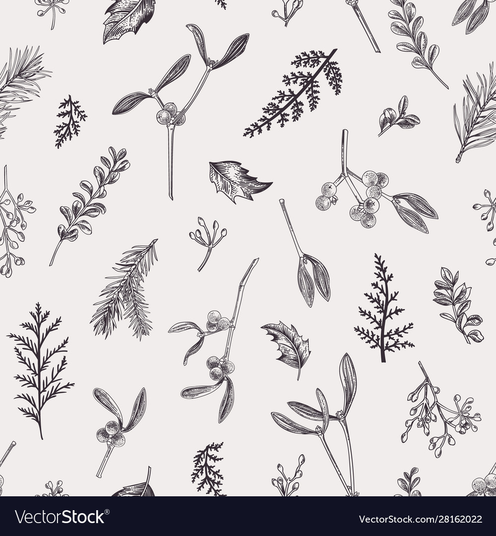 Seamless pattern with leaves seeds conifers