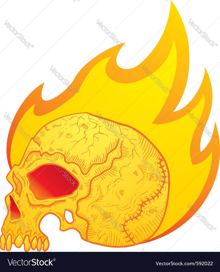 Skull in flames vector image