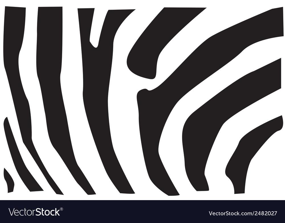 Zebra fur pattern vector image