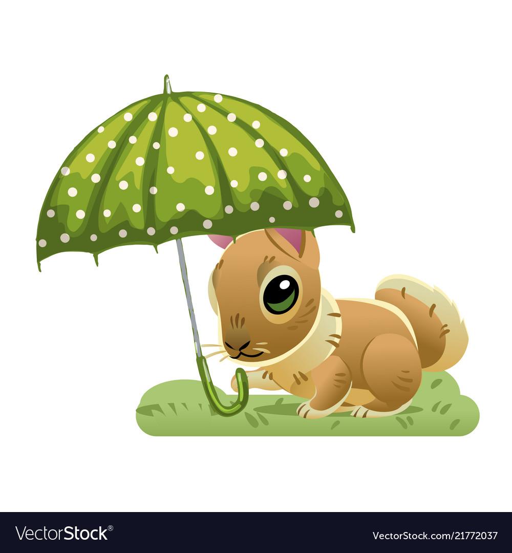 Cute rabbit under a green umbrella on the grass