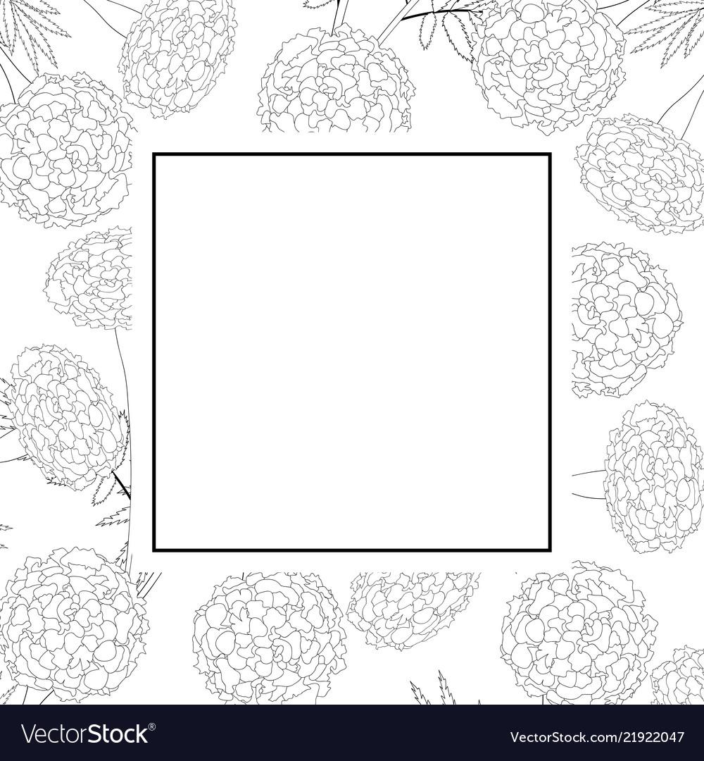 Marigold on white banner card outline