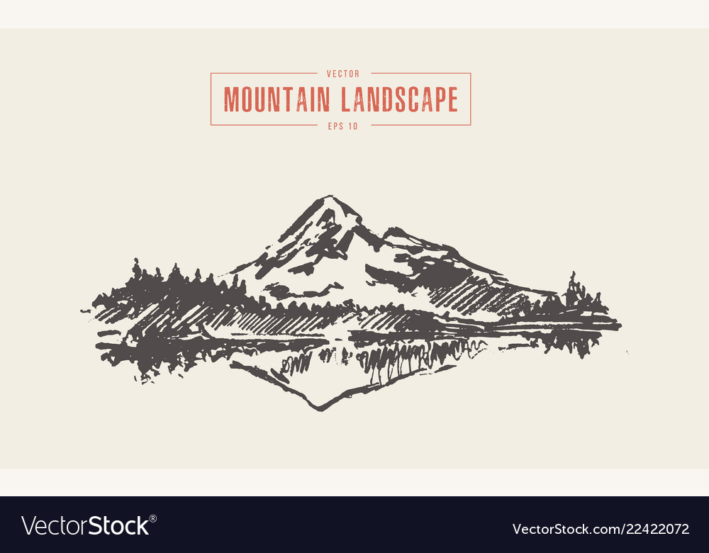 Mountain landscape spruce forest lake drawn
