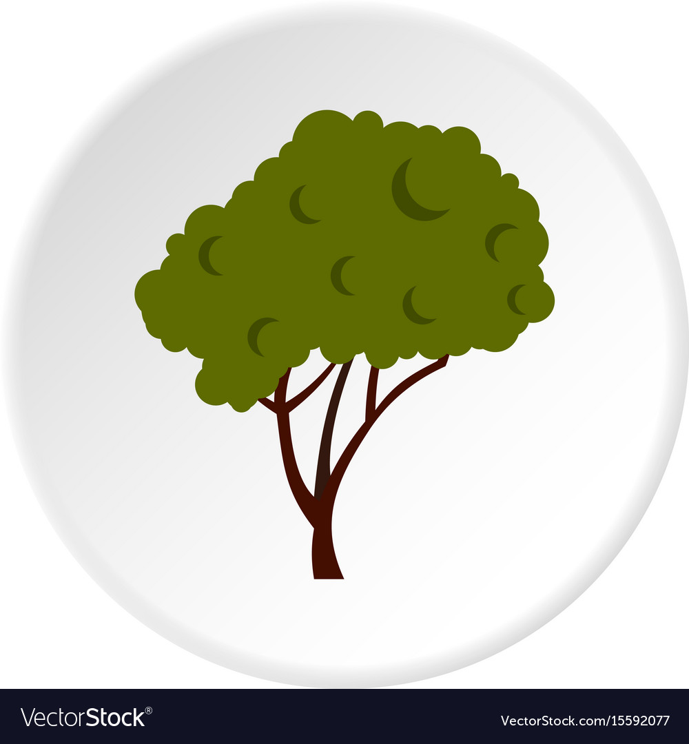 Tree with fluffy crown icon circle
