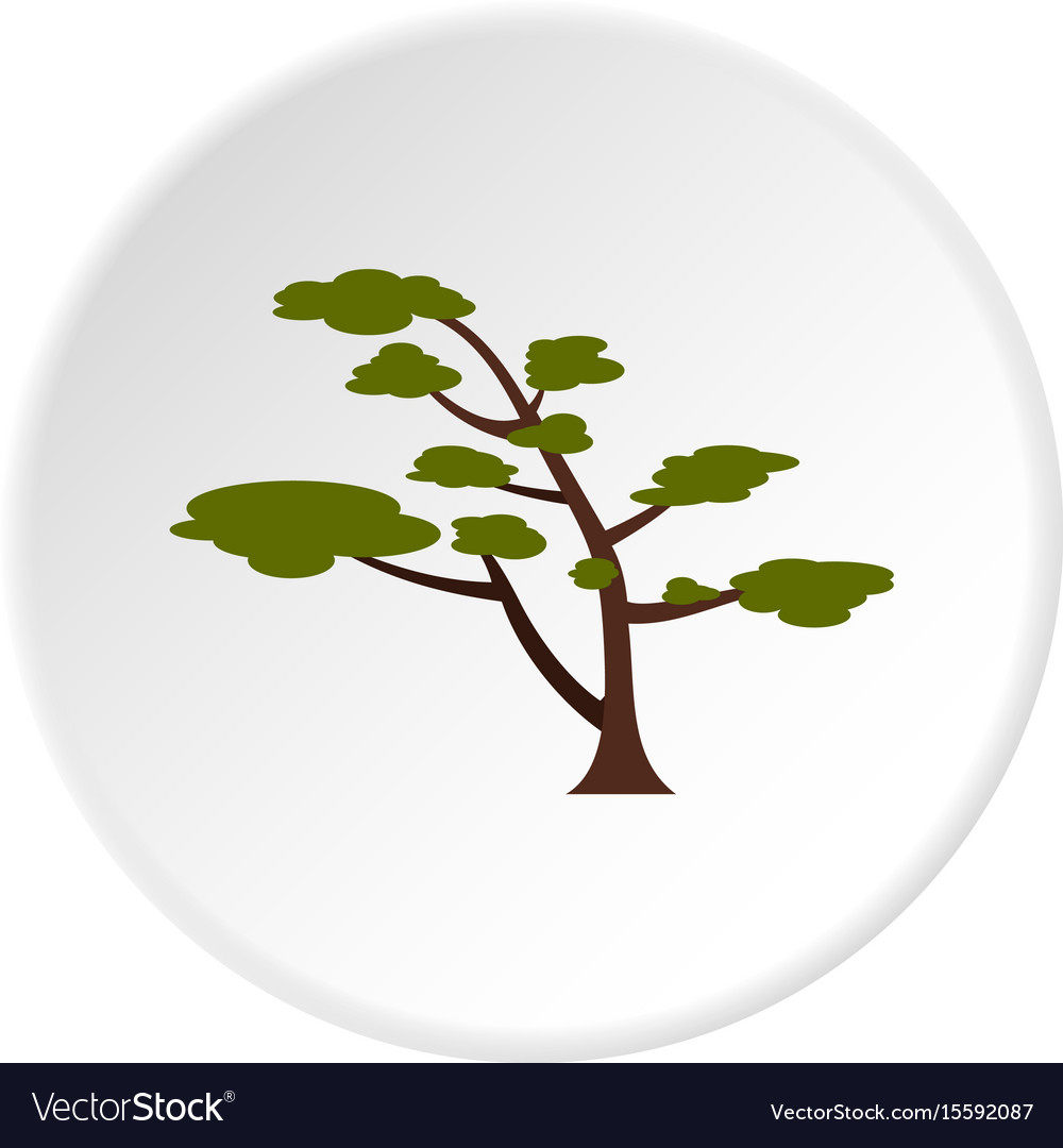 Tree with crown icon circle