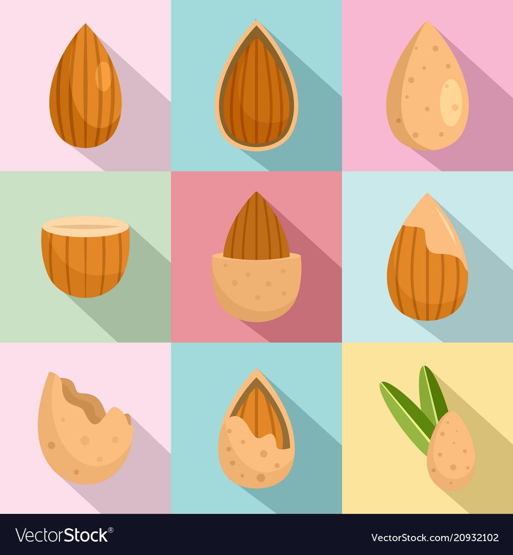 Almond walnut oil seed icons set flat style