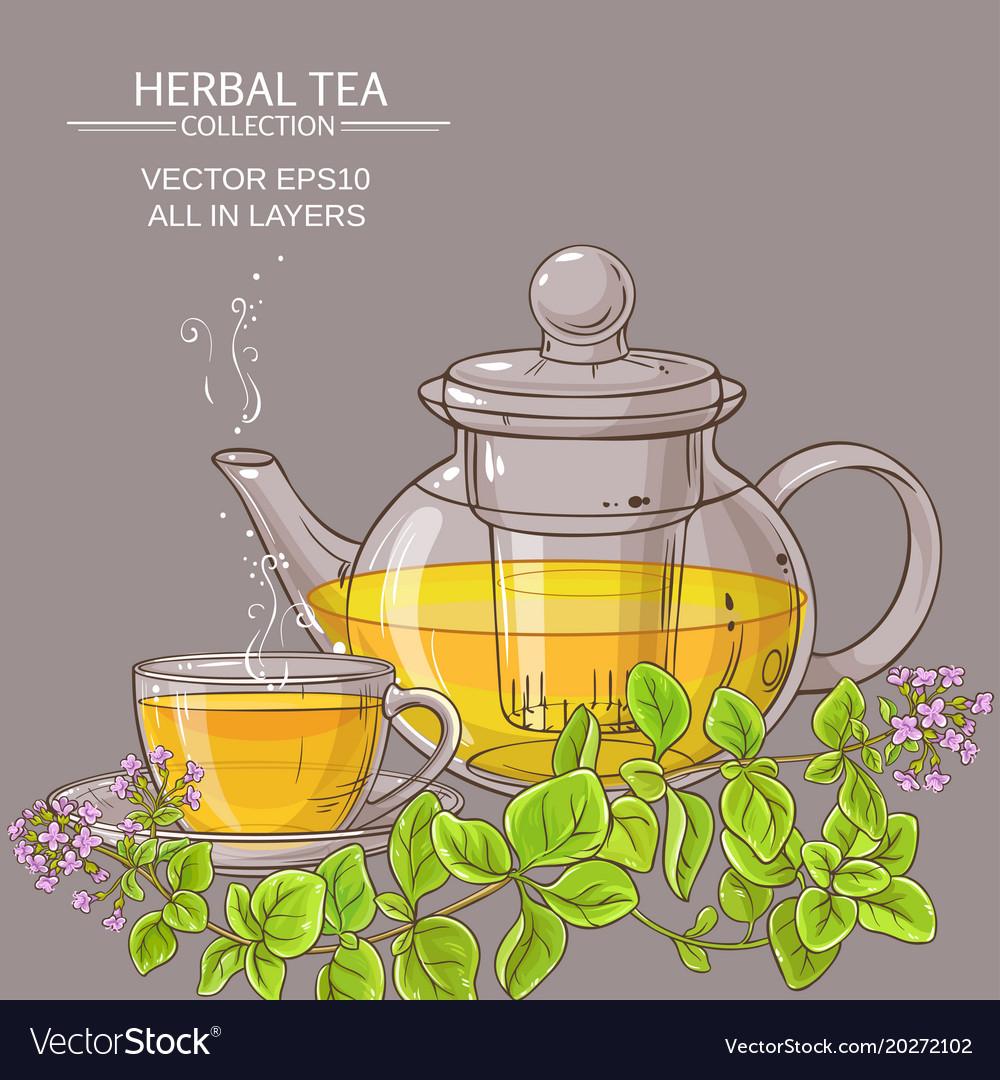 Cup of oregano tea in teapot