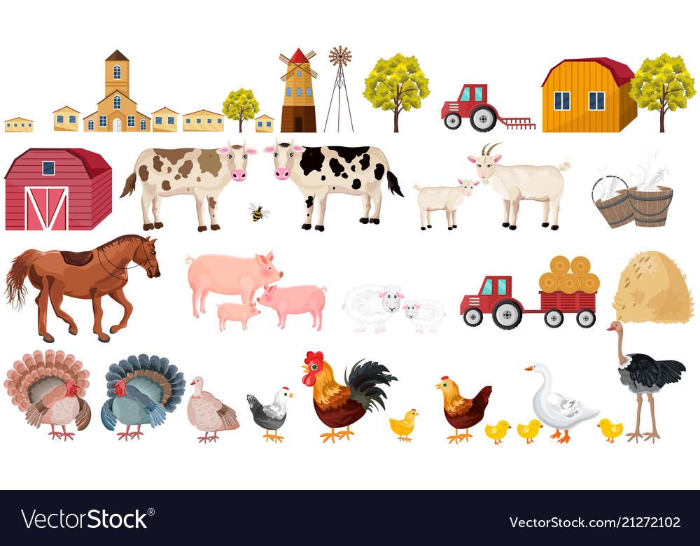 Farm big set collection village animals