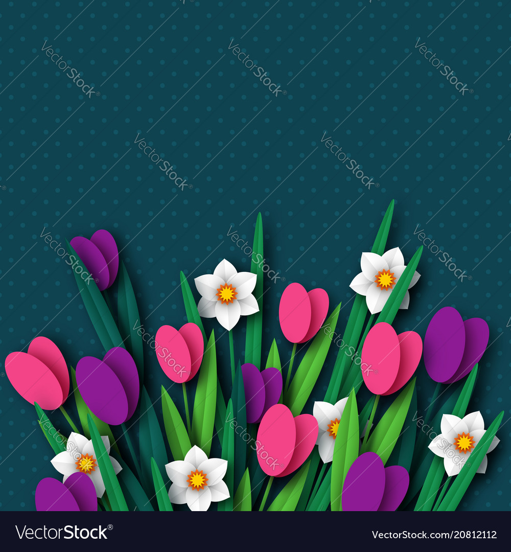 Paper cut spring flowers tulip and narcissus vector image mightylinksfo
