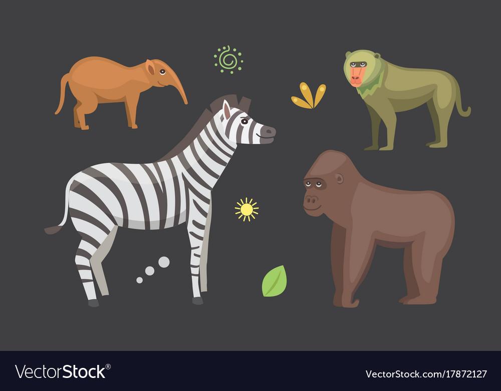 African animals cartoon set zebra hyena