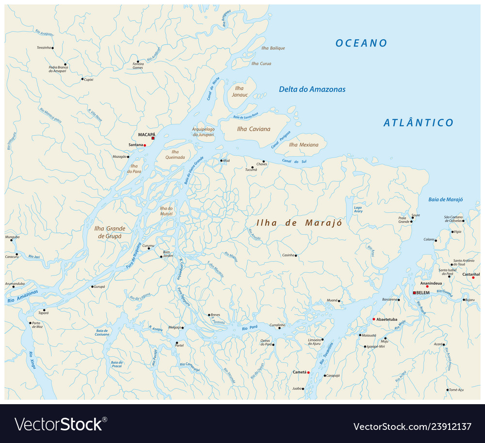 Detailed map of the mouth of the amazon river in vector image
