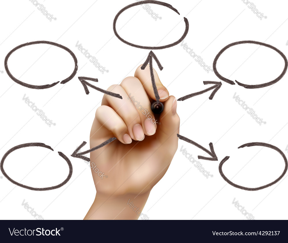 hand drawing empty diagram royalty free vector image rh vectorstock com