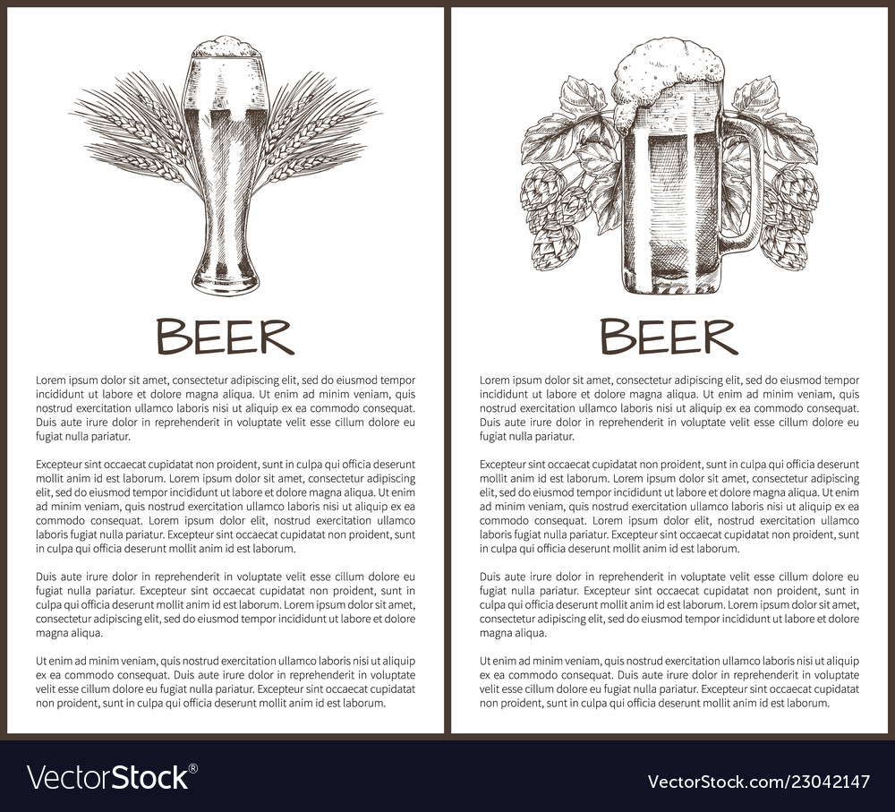 Beer object in ink hand drawn style sketch